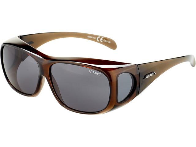 Alpina Sunglasses Overview, black transparent/black